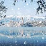 winterph9