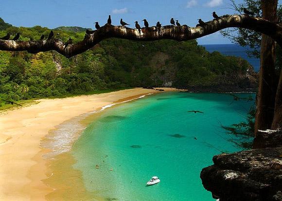 Νησί Fernando de Noronha   Βορειοανατολική ακτή της Βραζιλίας
