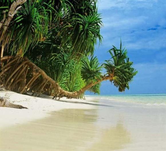 Νησιά Μαλδίβες  Ινδικός Ωκεανός 4